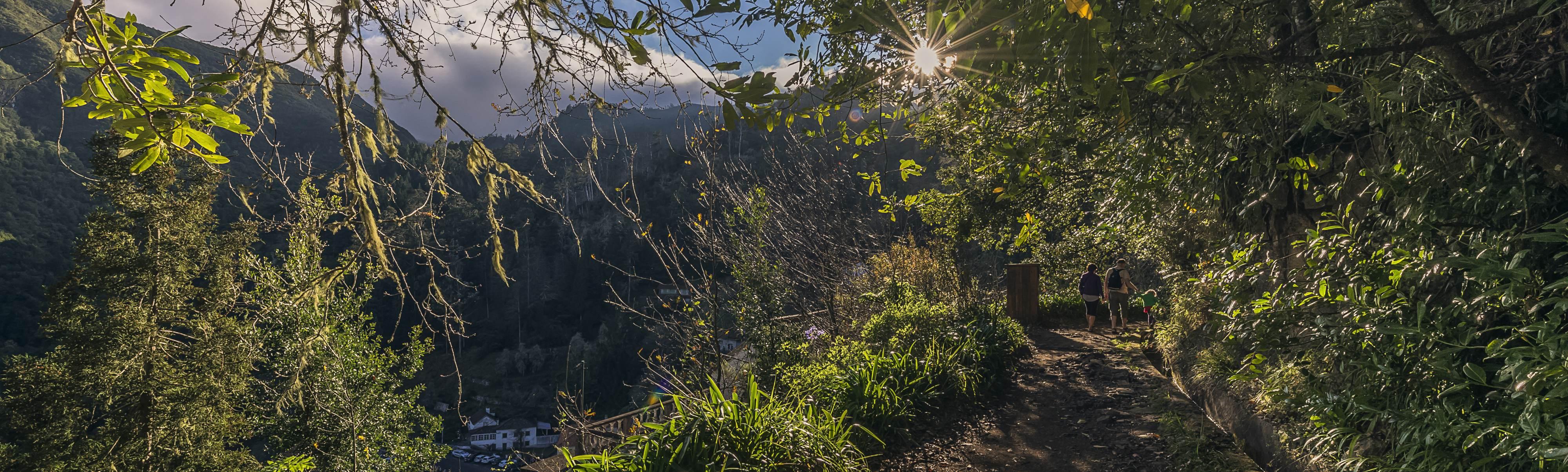 Individuell Wandern Auf Madeira Jetzt Buchen Bei Picotours