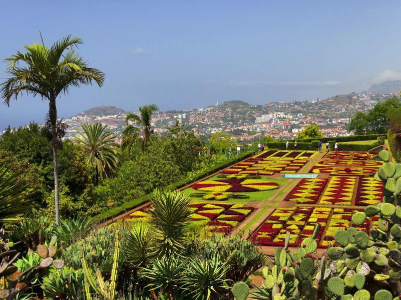 Der Botanische Garten Von Madeira Jetzt Buchen Bei Picotours